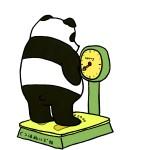 夜に食べないダイエット!?私はコレで14キロ痩せました!!
