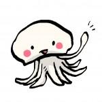 【きくらげ】【中華くらげ】【山くらげ】はどう違う?本物のクラゲはコレだ!!