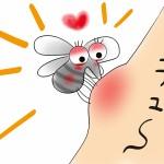 赤ちゃんが蚊に刺された?すぐにできる応急処置はコレだ!!